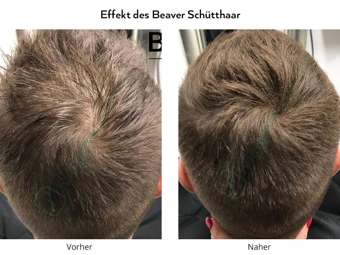Effekt des Beaver Schütthaar Man